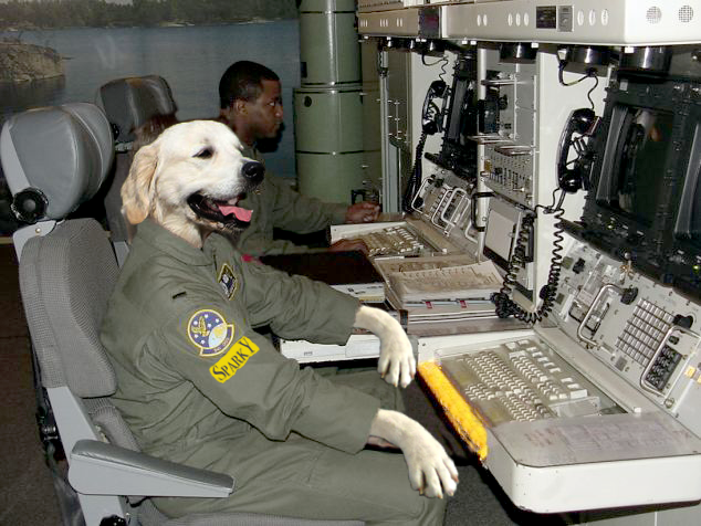 dog tech support. free unlimited 24/7/365 dog training \u0026 tech support for you and your